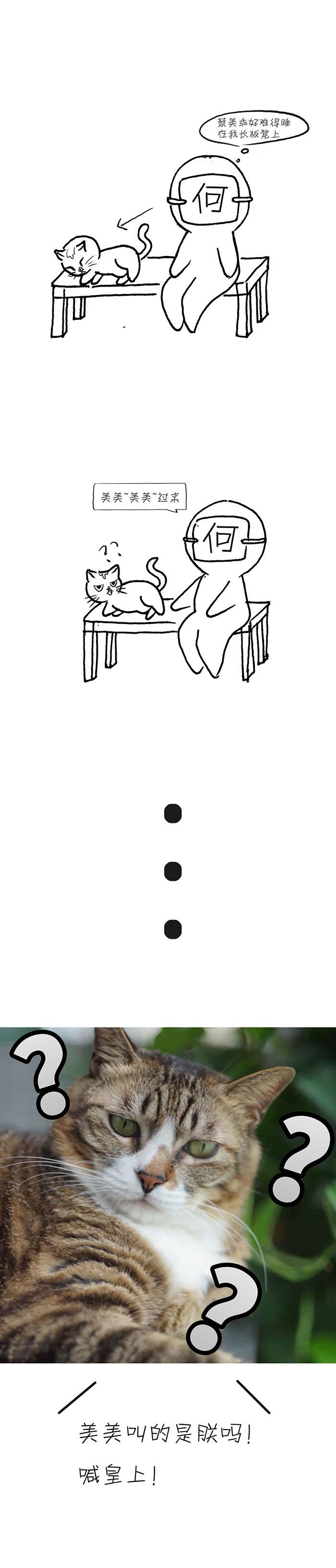 蔡美乖:朕胖吗!!!!